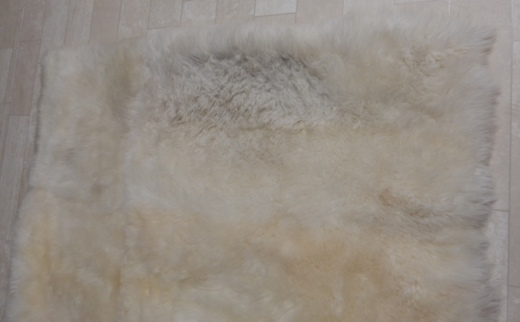 sheepskin before area rug cleaning